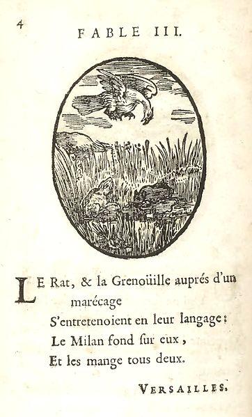 Le rat et la grenouille